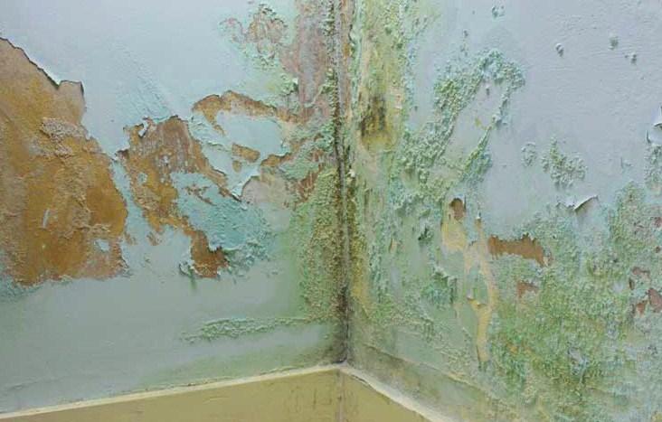 C mo eliminar la humedad por capilaridad en un muro un - Casa con humedad ...